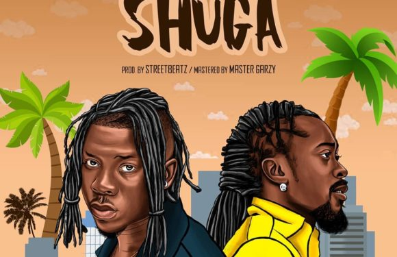 Stonebwoy_Shuga_ft_Beenie Man_(official video)